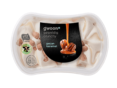 g'woon pecan karamel ijs 200 ml