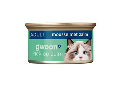 g'woon mousse met zalm 85 gram