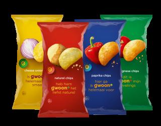 Chips regulier